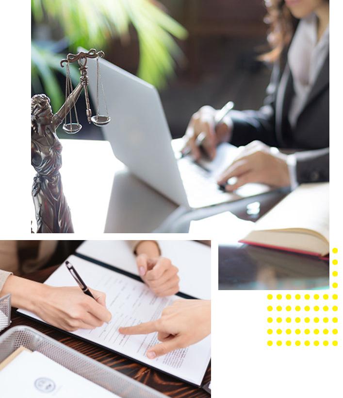 carina-silva-sobre-advocacia-consultoria-2